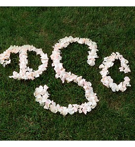 Rose Petal Monogram in Eugene OR, Dandelions Flowers