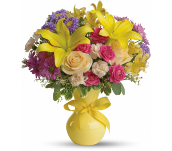 Color It Happy in Norristown PA, Plaza Flowers