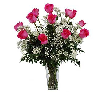 One Dozen Pink Roses with baby''s Breath in Madison WI, Felly's Flowers