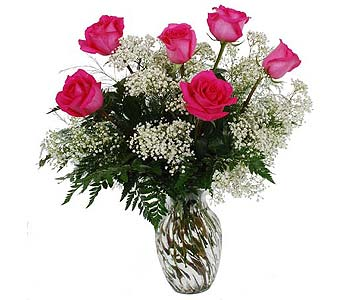 One Half Dozen Pink Roses with Baby''s Breath in Madison WI, Felly's Flowers