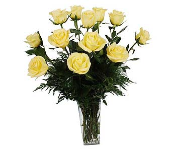 One Dozen Yellow Roses in Madison WI, Felly's Flowers
