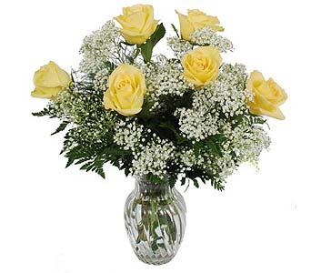 One Half Dozen Yellow Roses with Baby�s Breath in Madison WI, Felly's Flowers