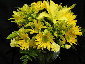 Yellow cube vase in Chapel Hill NC, Floral Expressions and Gifts