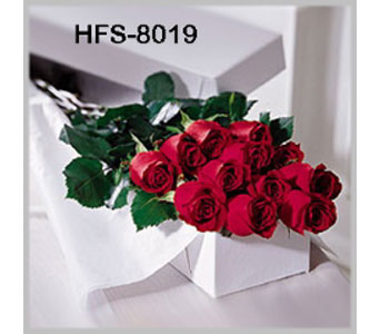 Classic 1 Dozen Long-Stemmed Roses - Red - Boxed in Fairfield CT, Town and Country Florist
