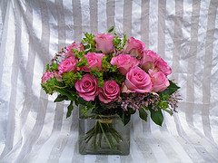 Two dozen in a cube in Chapel Hill NC, Floral Expressions and Gifts