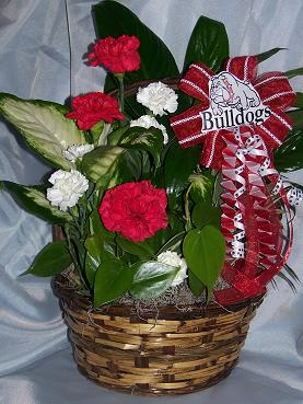 bulldog planter in Crown Point IN, Debbie's Designs