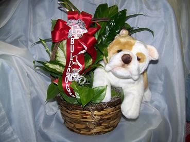 plush dog planter in Crown Point IN, Debbie's Designs