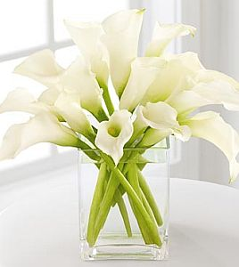 Pure of Heart Calla Lily Bouquet in Guelph ON, Patti's Flower Boutique