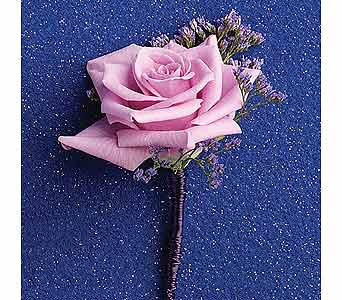 Traditional Purple Rose in Coplay PA, The Garden of Eden