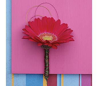 Metallic Mini Gerbera in Coplay PA, The Garden of Eden