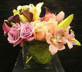 Orchid, Lilies and Roses Cube in North Hollywood CA, Toluca Lake Florist