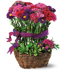 Basket of Smiles in Tyler TX, Country Florist & Gifts