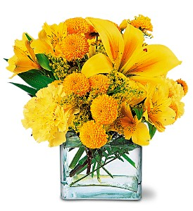 Sunshine Thoughts by Petals & Stems in Dallas TX, Petals & Stems Florist