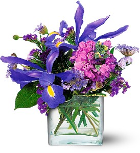 Blues for You by Petals & Stems in Dallas TX, Petals & Stems Florist