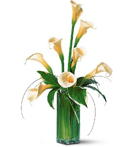 White Callas in Rancho Cordova CA, Roses & Bows Florist Shop