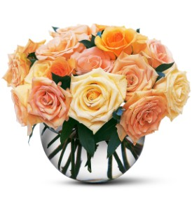 Perfect Pastel Roses in Newport News VA, Pollards Florist