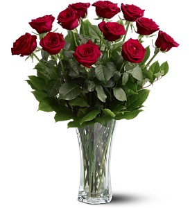 A Dozen Premium Red Roses in Bluffton IN, Posy Pot