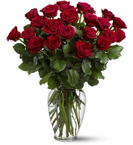 Two Dozen Red Roses in Hunt Valley MD, Hunt Valley Florals & Gifts