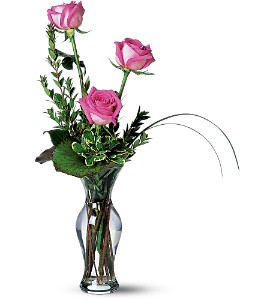 Tender Trio in San Diego CA, <i><b>Edelweiss Flower Salon  858-560-1370</i></b>