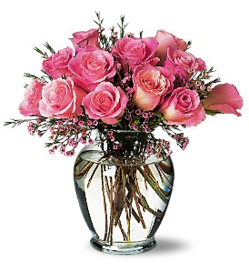A Pretty Pink Dozen in Dallas TX, Petals & Stems Florist