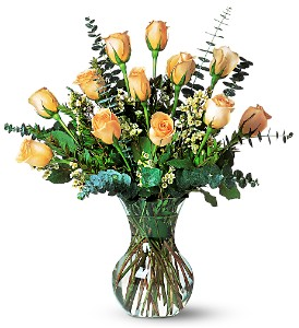 A Dozen Pale Peach Roses in Virginia Beach VA, Kempsville Florist & Gifts<BR>800-835-9995