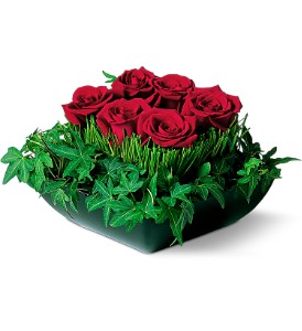 Simply Roses in Wantagh NY, Numa's Florist