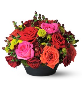 Everything's Rosy in Dallas TX, Petals & Stems Florist