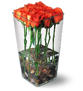 Orange Roses with River Rocks in Lewisville TX, D.J. Flowers & Gifts