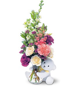 Teleflora's Bear Hug Bear with White Roses in Winter Park FL, Apple Blossom Florist