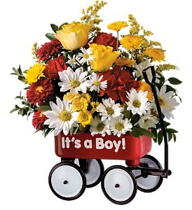 Teleflora's Baby's First Wagon - Boy in Skowhegan ME, Boynton's Greenhouses, Inc.