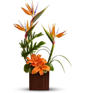 Teleflora's Bamboo Paradise in Sylmar CA, Saint Germain Flowers Inc.