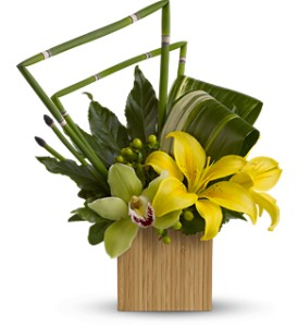 Teleflora's Bamboo Zen in Largo FL, Rose Garden Flowers & Gifts, Inc