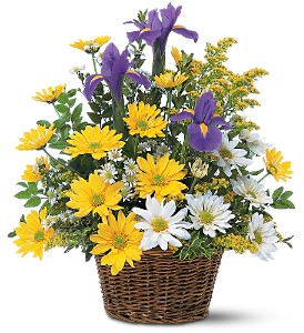 Smiling Spring Basket in Santa Monica CA, Edelweiss Flower Boutique