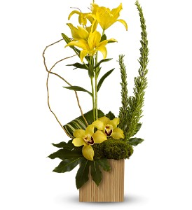 Teleflora's Bamboo Tropics in Greenwood Village CO, DTC Custom Floral