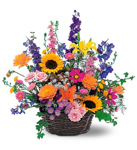 Summertime Sensation Basket in Wellington FL, Wellington Florist
