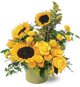 A Pot of Sunflowers in Crown Point IN, Debbie's Designs