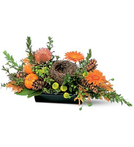 Visions of Autumn Centerpiece in Grass Lake MI, Designs By Judy