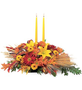 Country Harvest in Fond Du Lac WI, Haentze Floral Co
