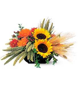 Sunflower Harvest in Reston VA, Reston Floral Design