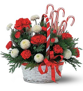 Candy Cane Basket in Abington MA, The Hutcheon's Flower Co, Inc.