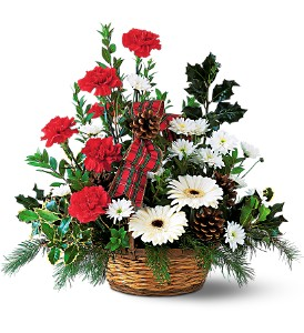 Winter Wonderland Basket in Georgetown ON, Vanderburgh Flowers, Ltd