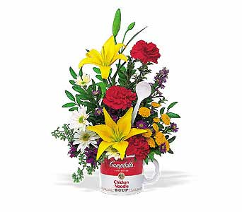The Teleflora Campbell's® ''Get Well'' Bouquet in Oklahoma City OK, Array of Flowers & Gifts