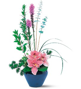 Orchid Cheer in Plantation FL, Plantation Florist-Floral Promotions, Inc.
