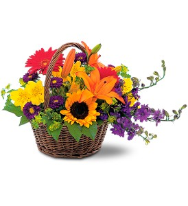 Basket of Blossoms by Petals & Stems in Dallas TX, Petals & Stems Florist