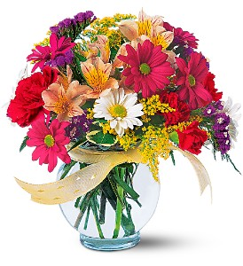 Joyful and Thrilling in Moon Township PA, Chris Puhlman Flowers & Gifts Inc.