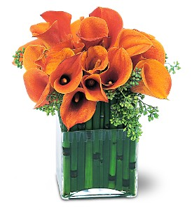Bronze Callas in Bradenton FL, Ms. Scarlett's Flowers & Gifts