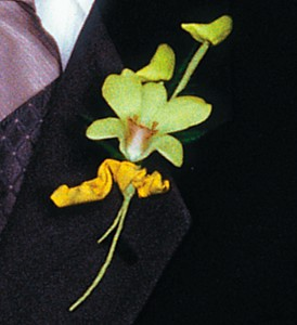 Cat's-Eye Green Orchid Boutonniere in San Antonio TX, Pretty Petals Floral Boutique
