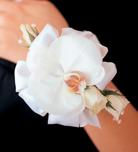White Orchid and Roses Wristlet in Winnipeg MB, Cosmopolitan Florists