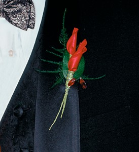 Red Rose Petals Boutonniere in San Antonio TX, Pretty Petals Floral Boutique