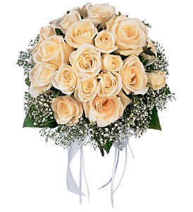 Hand-Tied White Roses Nosegay in Winnipeg MB, Cosmopolitan Florists